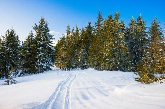 Masyw Śnieżnika i jego turystyczny potencjał